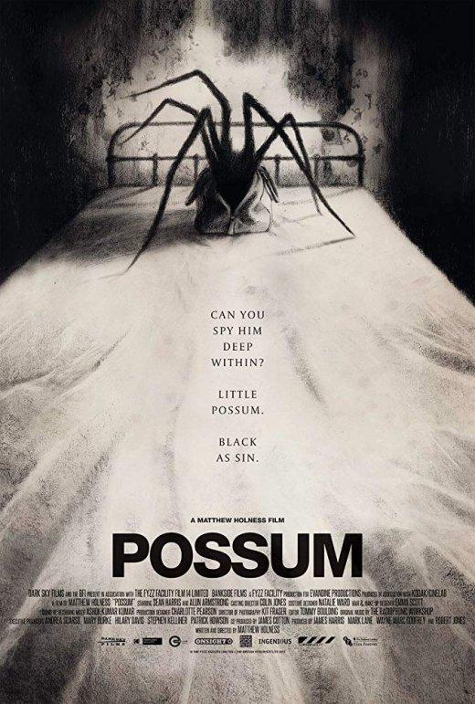 Possum (2018) [BRRip 1080p]