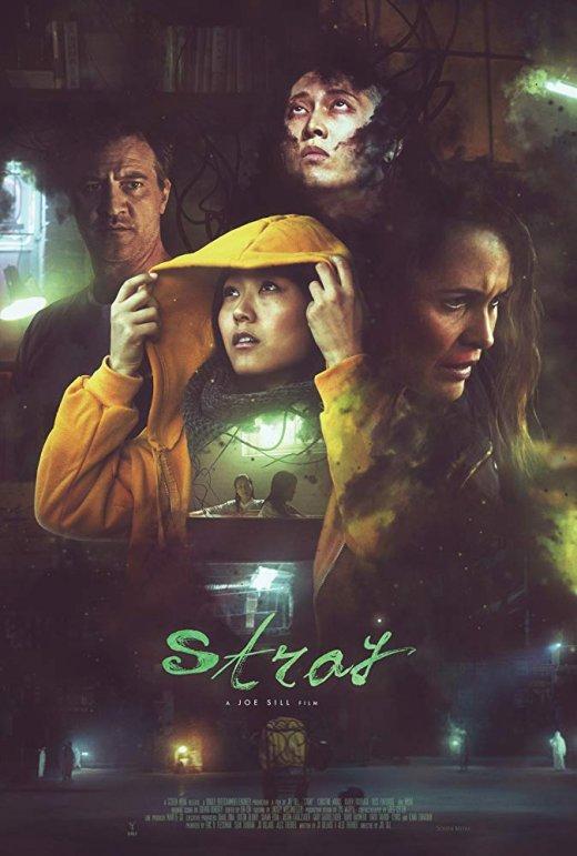Stray (2019) WEB-DL