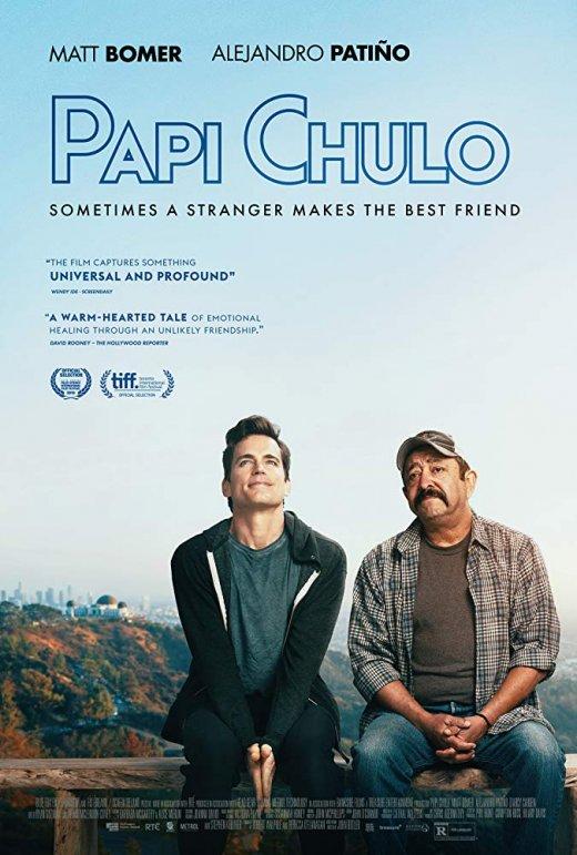 Papi Chulo (2018) WEB-DL